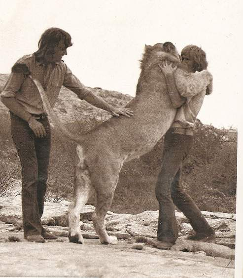 Reuunion hug with Christian the Lion.