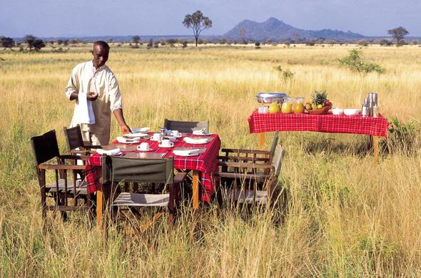 Enjoy a delicious bush breakfast at Elsas Kopje.