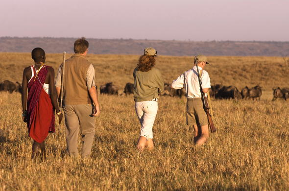 Guided walking safari in Masai Mara.