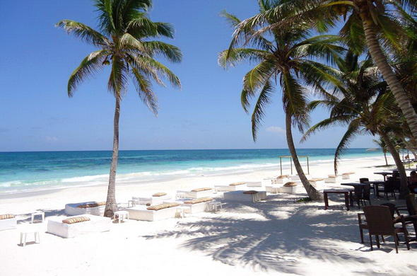 Palm Fringed Beaches Along The East Africa Coastline