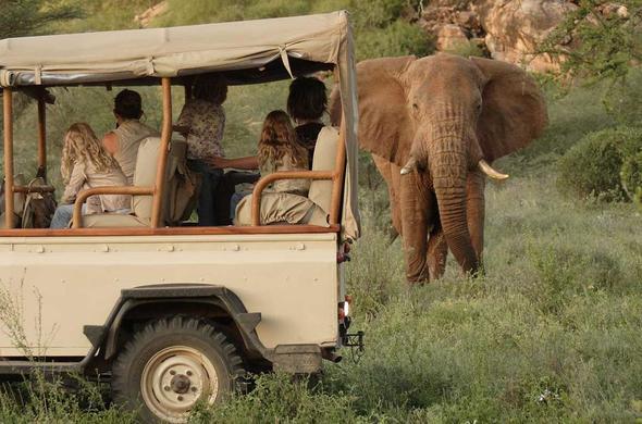 Saruni Wild Mara Gamedrives